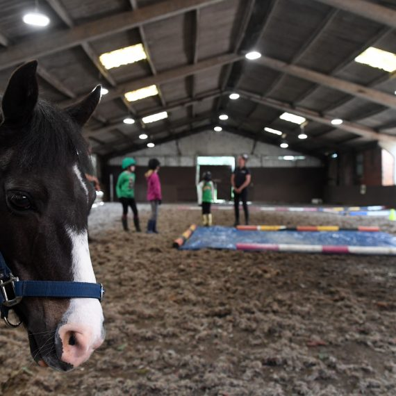 Fun in the indoor arena