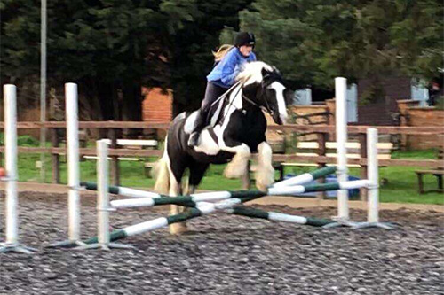 Show Jumping Clinic at the Ride High Equestrian Centre Milton Keynes