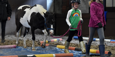 Have a go pony fun sessions at the Ride High Equestrian Centre Milton Keynes this February