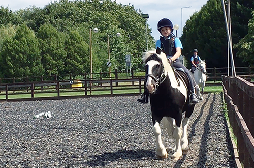 3 Day Camp at the Ride High Equestrian Centre Milton Keynes