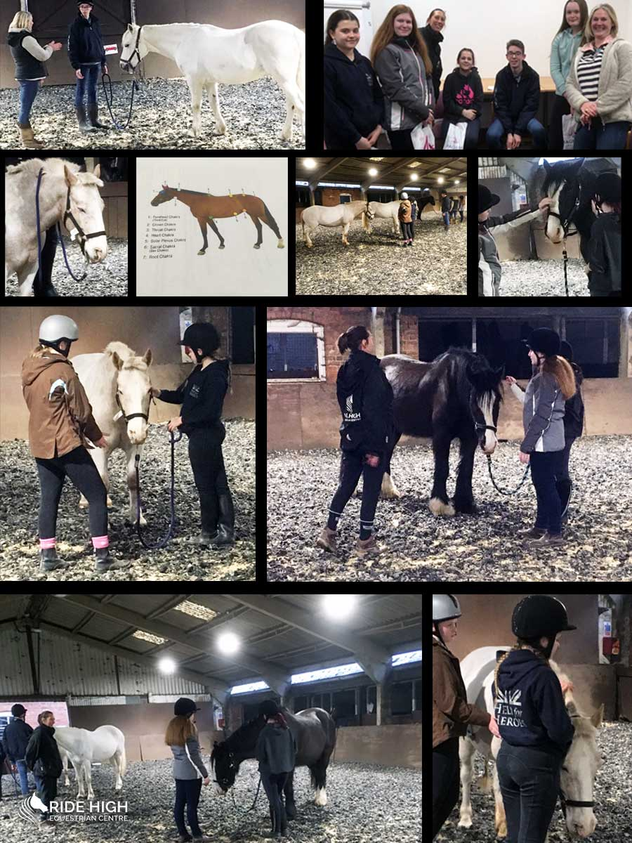 Ride High Equestrian Centre Reiki session with Pegasus Club members and Healing Umbrella