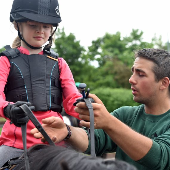 Riding lessons with expert tuition