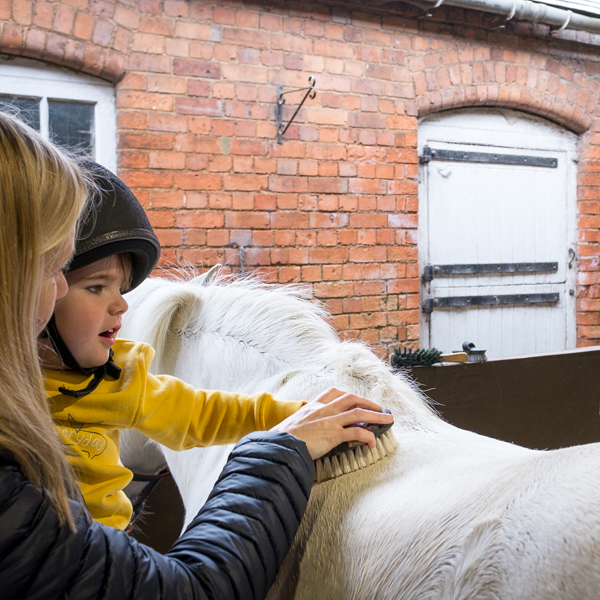 sensory programmes for children with additional needs at the ride high equestrian centre
