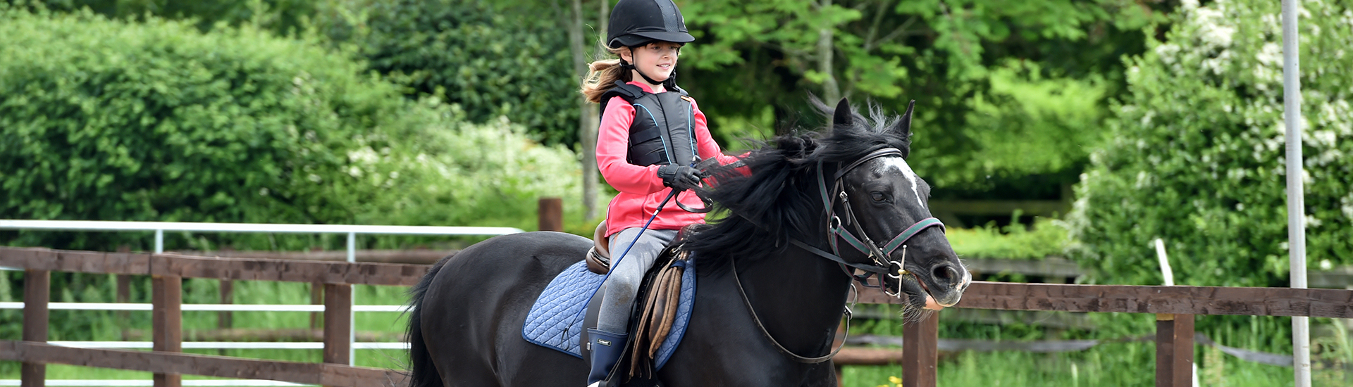 Ride High Riding Lessons Banner